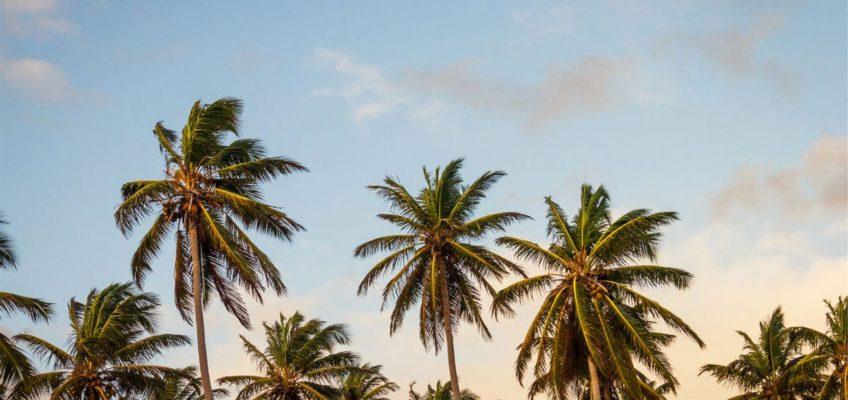 tierra de isla